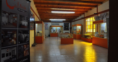 museo 3 4