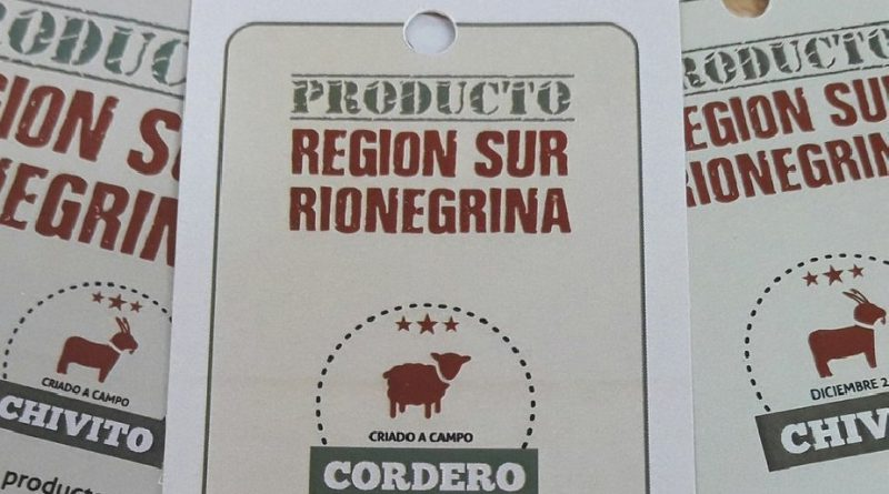 productos region sur