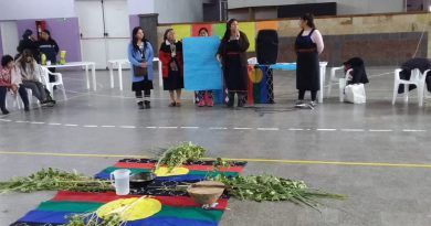 enccuentro mujeres mapuches